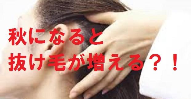 夏の紫外線ダメージ、皮脂や汗での頭皮環境の影響で秋は抜け毛が多くなってしまいます。